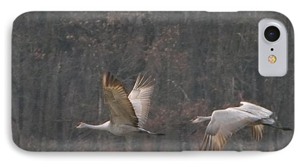 IPhone Case featuring the photograph Sandhills In Flight by Shari Jardina