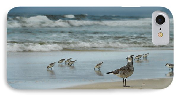 IPhone Case featuring the photograph Sandpiper Beach by Renee Hardison