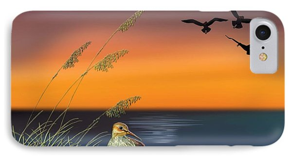 Sandpiper For Angel IPhone Case by Anne Beverley-Stamps