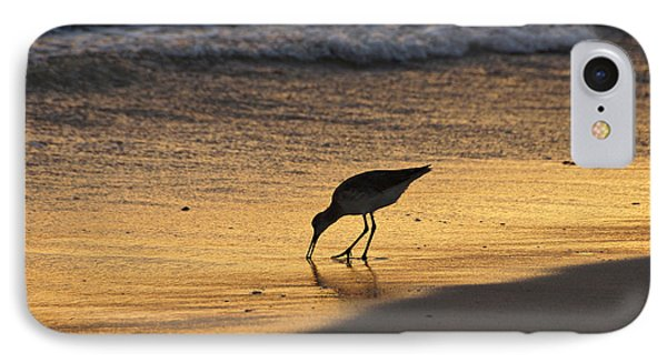 Sandpiper In Evening IPhone Case by Sandy Keeton