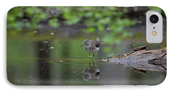IPhone Case featuring the photograph Sandpiper In The Smokies by Douglas Stucky