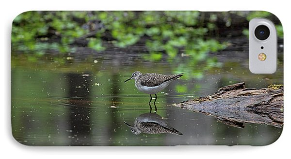 IPhone Case featuring the photograph Sandpiper In The Smokies II by Douglas Stucky