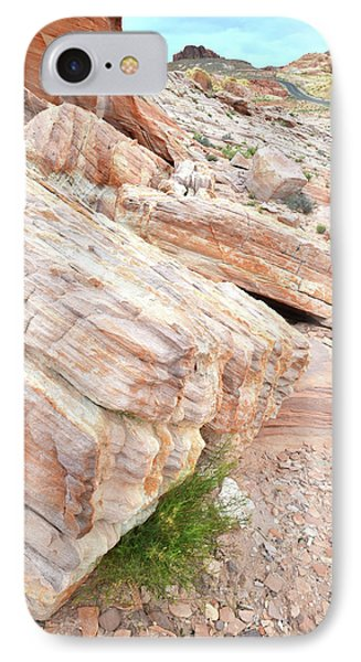 IPhone Case featuring the photograph Sandstone Along Park Road In Valley Of Fire by Ray Mathis