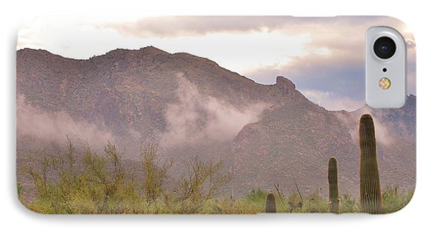 Santa Catalina Mountains II IPhone Case by Donna Greene