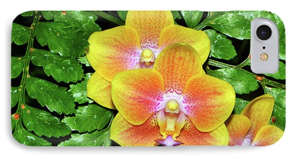 Sara Gold Orchids 003 IPhone Case by George Bostian