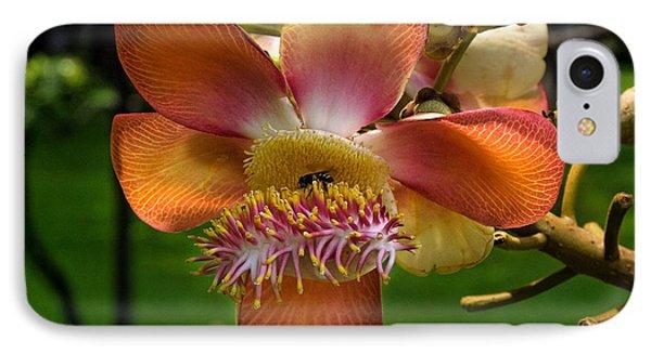 Sara Tree Flower Dthb104 IPhone Case by Gerry Gantt