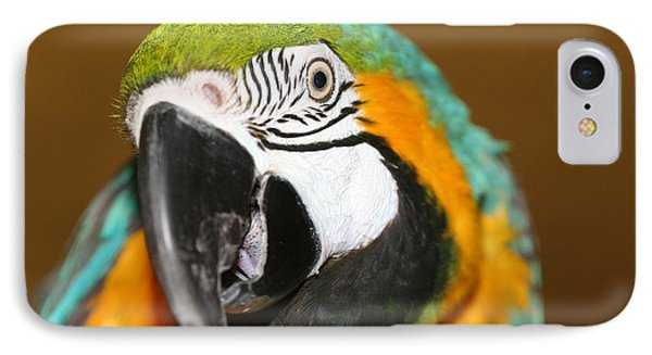 IPhone Case featuring the photograph Sassy Blue And Gold Macaw by Diane Merkle
