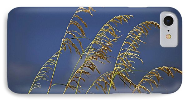 IPhone Case featuring the photograph Saturday Sway by Michiale Schneider