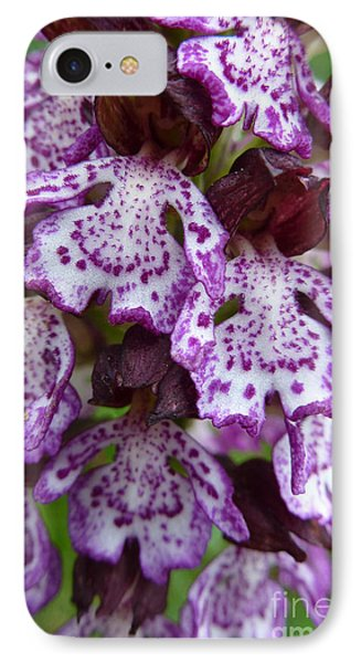 Savage Orchid 2 IPhone Case by Jean Bernard Roussilhe