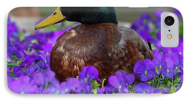 Say Quack IPhone Case