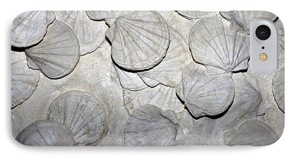 Scallop Fossils IPhone Case