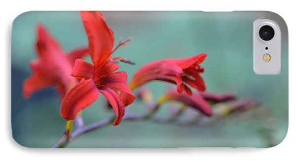 Scarlet Blooms IPhone Case