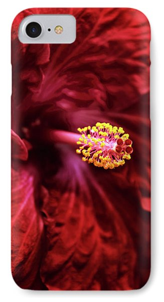 Scarlet Hibiscus IPhone Case by Jessica Jenney