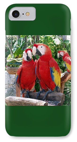 Scarlet Macaws IPhone 7 Case by Ellen Henneke