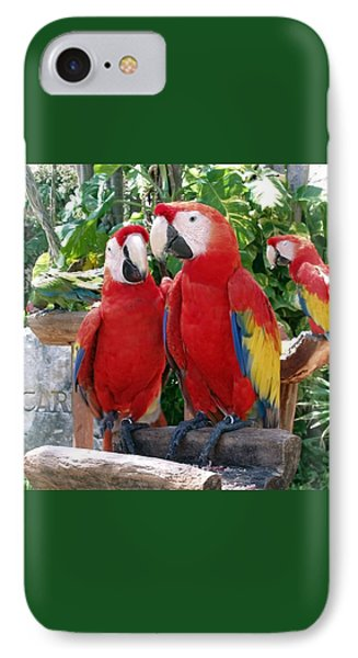 Scarlet Macaws IPhone 7 Case