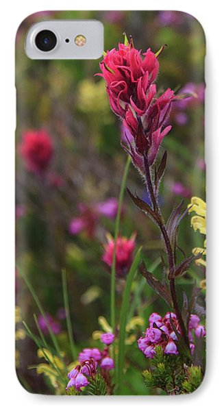 IPhone Case featuring the photograph Scarlet Paintbrush by David Chandler