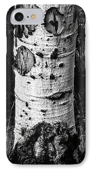Scarred Old Aspen Tree Trunk In Colorado Forest IPhone Case by John Brink