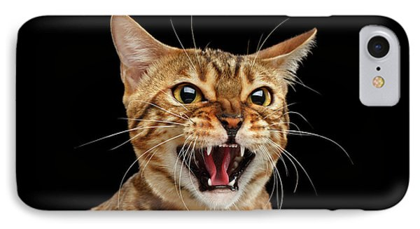 Scary Hissing Bengal Cat On Black Background IPhone Case by Sergey Taran