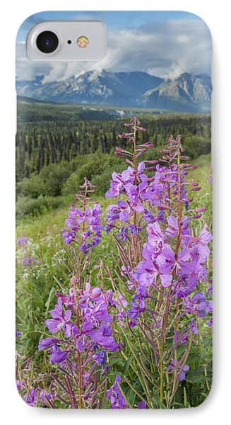 Scenic View Of Landscape Near Palmer IPhone Case by Remsberg Inc