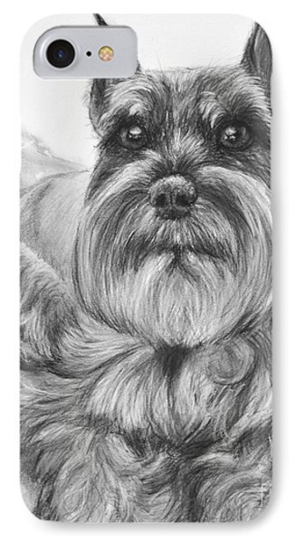 Schnauzer Drawing Bailey IPhone Case by Kate Sumners