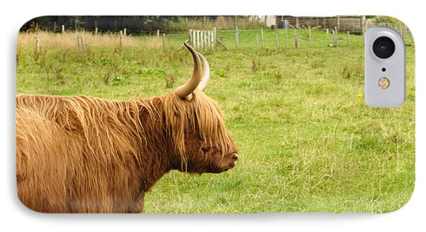 IPhone Case featuring the photograph Scottish Cattle Farm by Christi Kraft