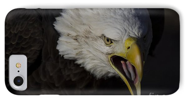 Screaming Eagle IPhone Case by Andrea Silies