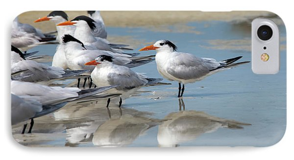 IPhone Case featuring the photograph Sea Birds by Gouzel -