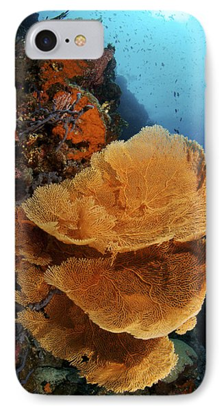 Sea Fan Coral - Indonesia Phone Case by Steve Rosenberg - Printscapes