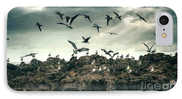 Sea Gulls IPhone Case