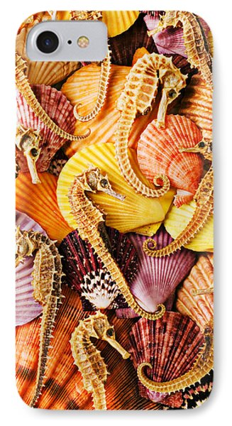 Sea Horses And Sea Shells IPhone Case by Garry Gay
