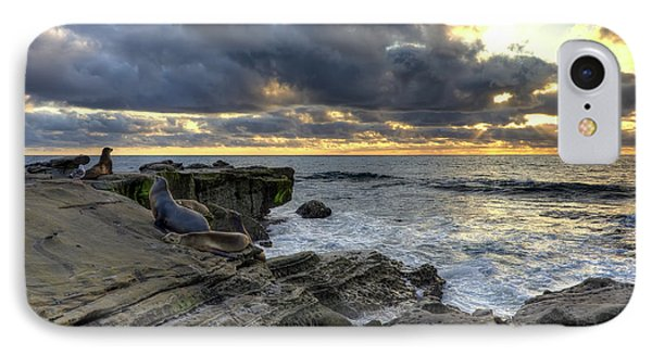 IPhone Case featuring the photograph Sea Lions At Sunset by Eddie Yerkish