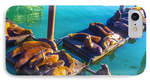 Sea Lions On Harbor Docks IPhone Case by Garry Gay