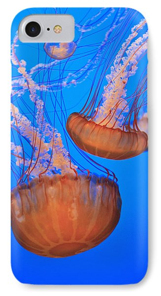 Sea Nettles Chrysaora Fuscescens In Phone Case by Stuart Westmorland