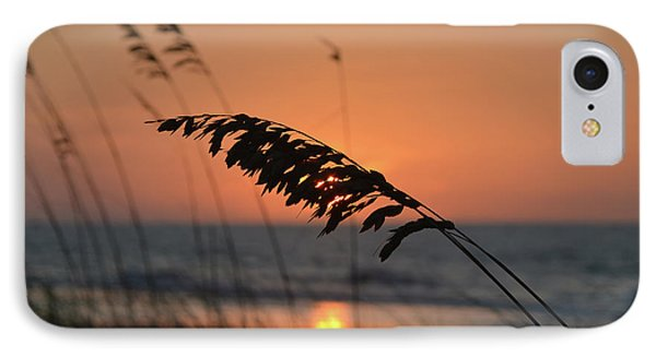 Sea Oats At Sunrise IPhone Case