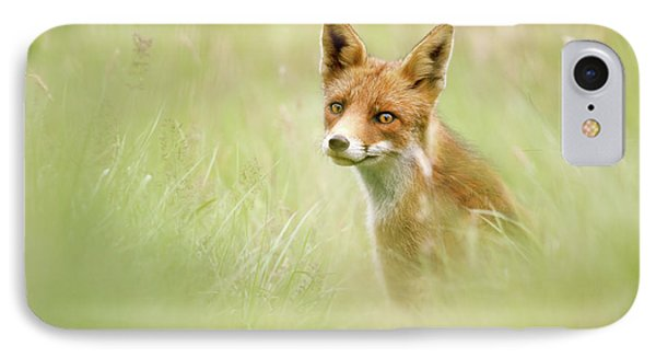 Sea Of Green - Red Fox In The Grass IPhone Case
