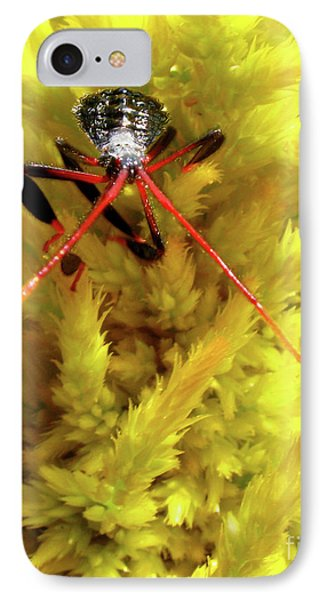 IPhone Case featuring the photograph Sea Of Yellow by Donna Brown