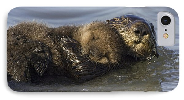 Sea Otter Mother With Pup Monterey Bay Phone Case by Suzi Eszterhas