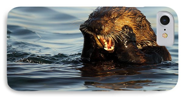 Sea Otter With A Toothache Phone Case by Max Allen