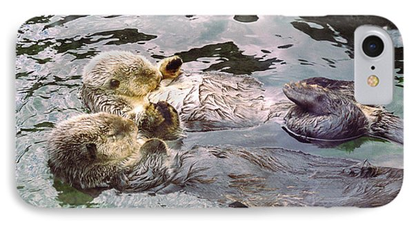 Sea Otters Holding Hands IPhone 7 Case by BuffaloWorks Photography
