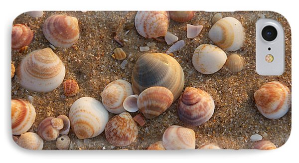 Sea Shells At Sunset IPhone Case
