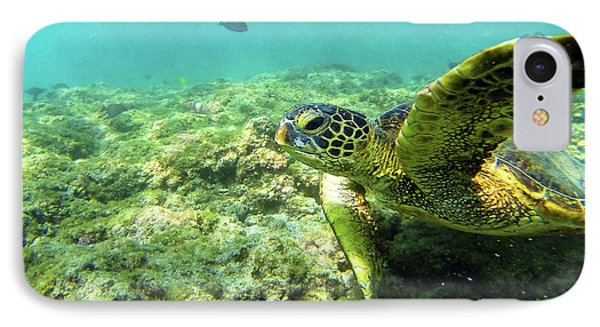 IPhone Case featuring the photograph Sea Turtle #2 by Anthony Jones
