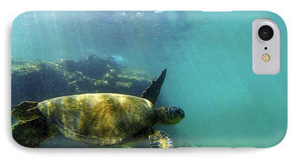 IPhone Case featuring the photograph Sea Turtle #5 by Anthony Jones