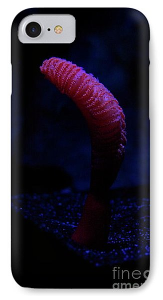 Sea Worm IPhone Case by Xn Tyler