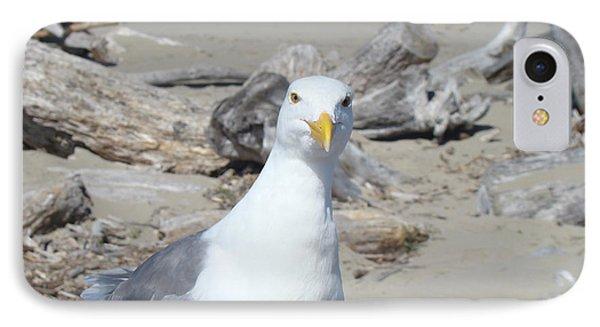 Seagull Bird Art Prints Coastal Beach Driftwood IPhone Case by Baslee Troutman