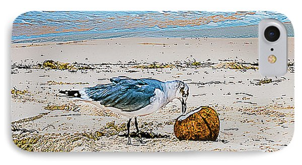 Seagull Eating From A Coconut On The Beach IPhone Case by Rick Grossman