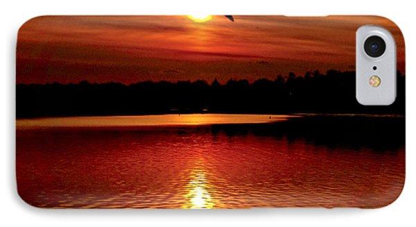 Seagull Homeward Bound IPhone Case by Carol F Austin