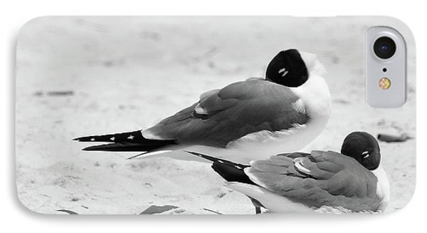 Seagull Nap Time IPhone Case