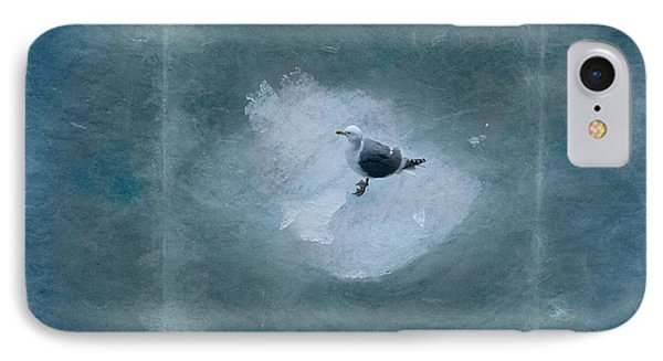 Seagull On Iceflow IPhone Case