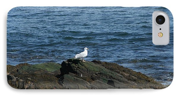IPhone Case featuring the digital art Seagull On The Rocks by Barbara S Nickerson