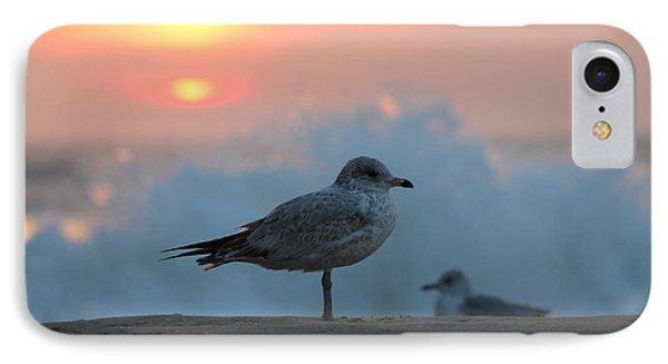 Seagull Seascape Sunrise IPhone Case